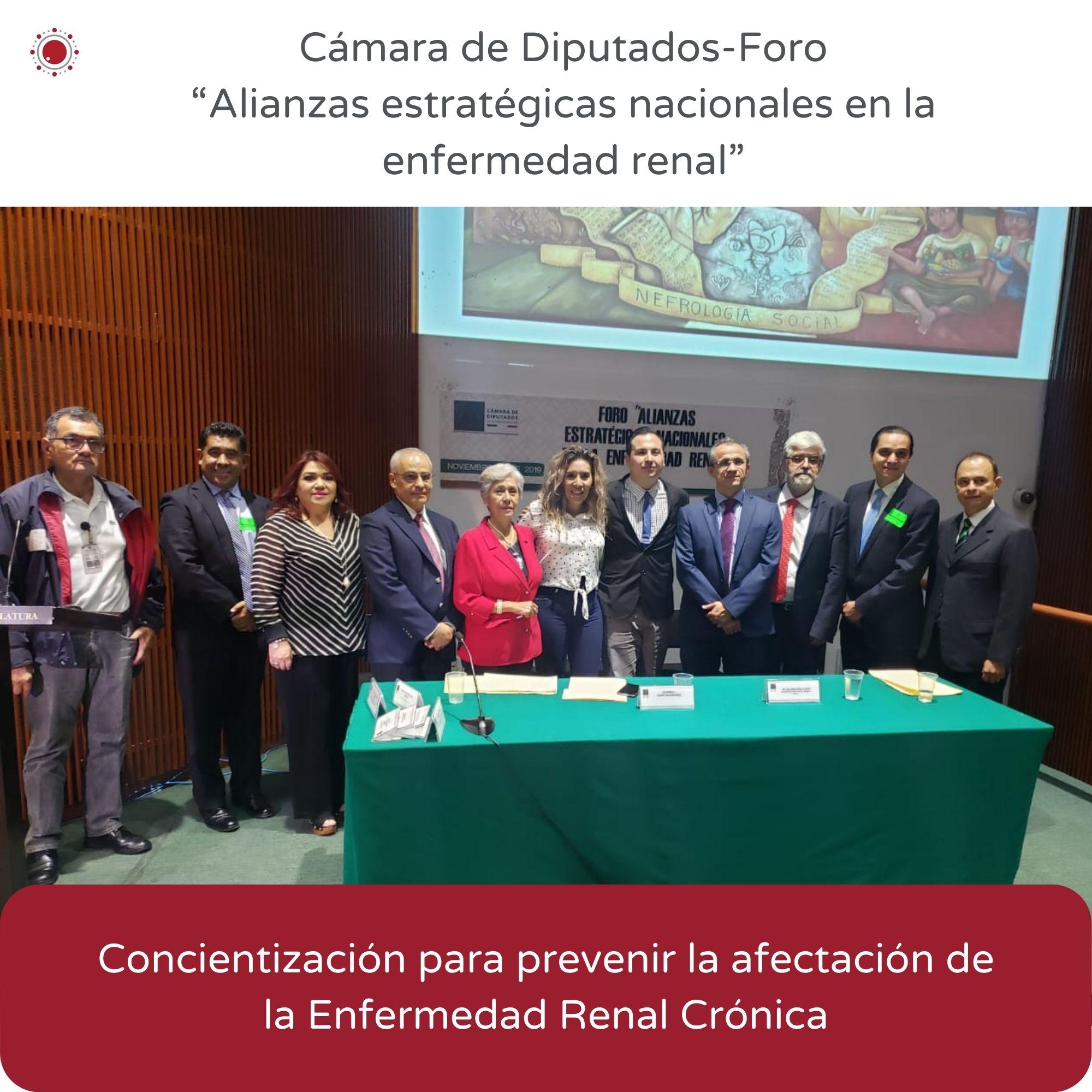REBIO-Camara de diputados